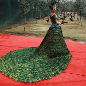 платья из павлиньих хвостов