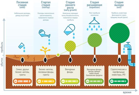 Инфографика график