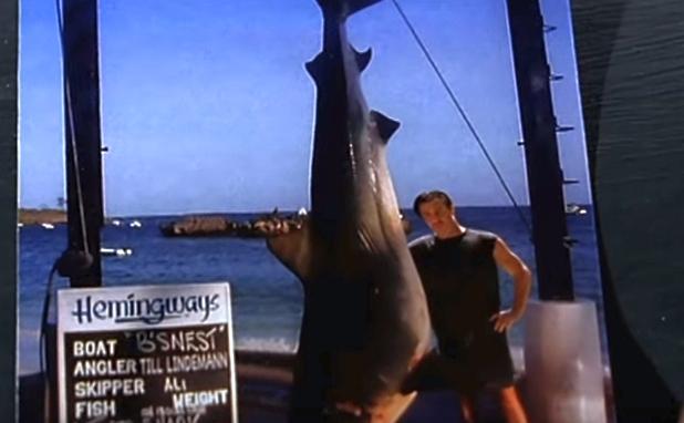 Haifisch открытка