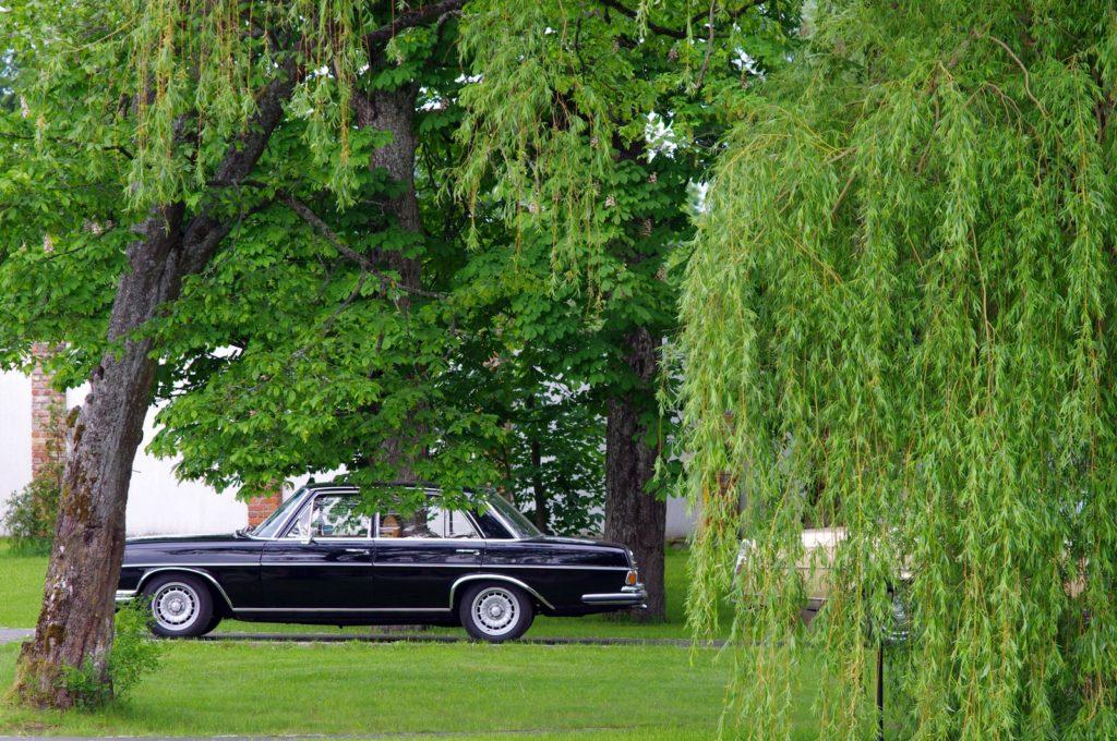 black car Золотая тень Кенигсберга