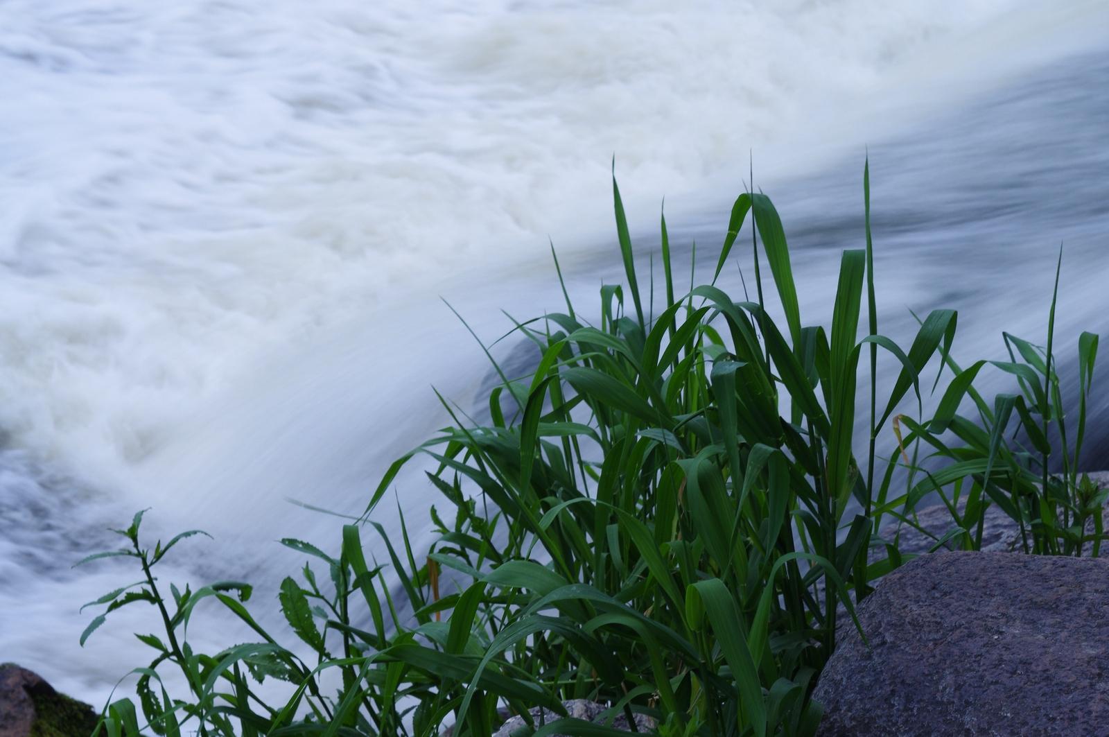 Водопад и зелень