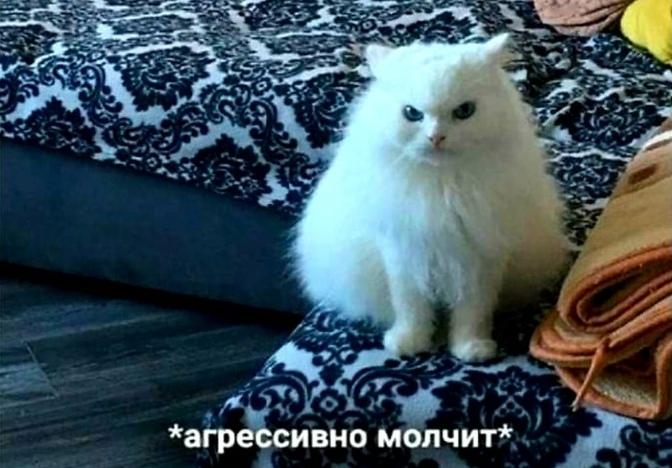Молчание кота